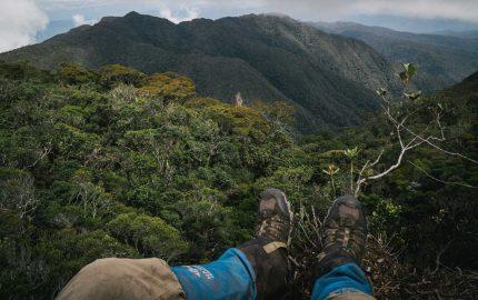 Sumatra Megatransect 2016 - Oli Broadhead